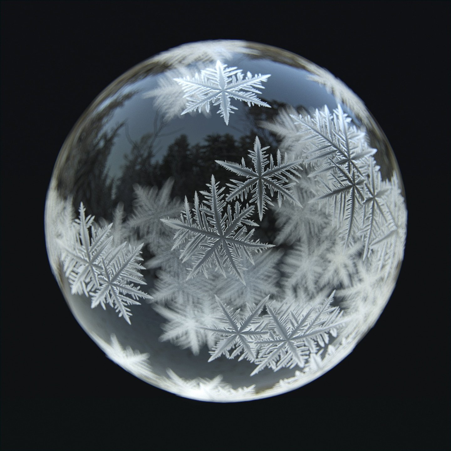The Snowflake Bubble